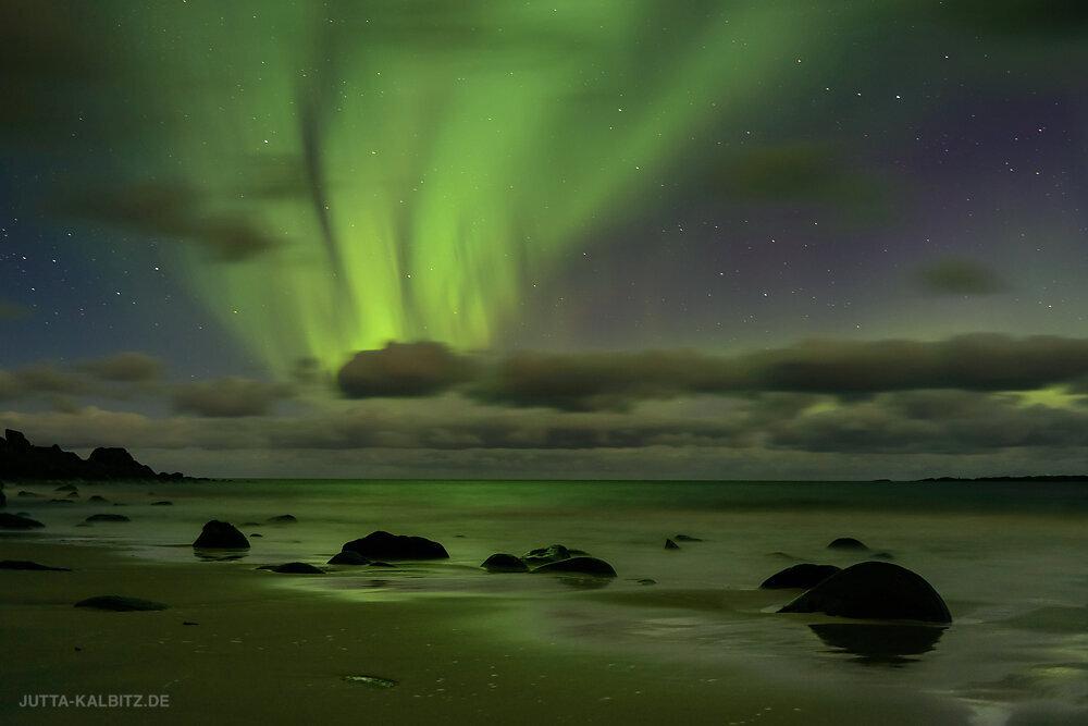 Polarlicht - Lofoten
