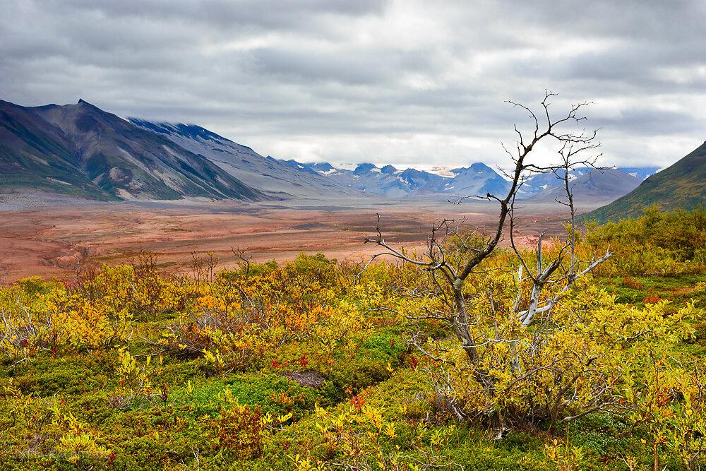 Valley of Ten Thousand Smokes - Katmai Nationalpark
