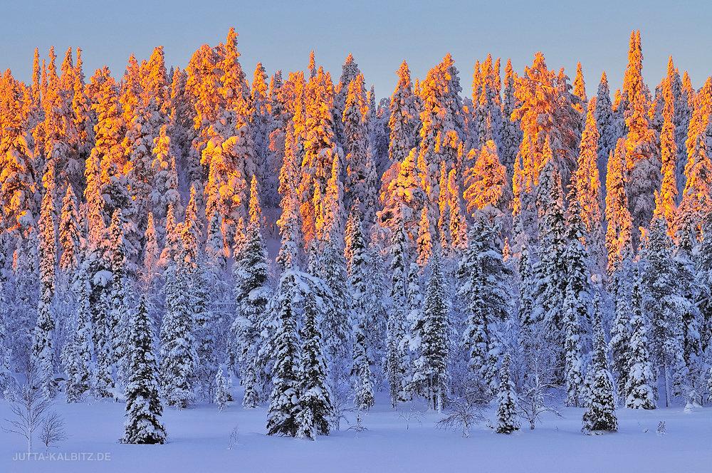 Kuusijärvi - Finnland