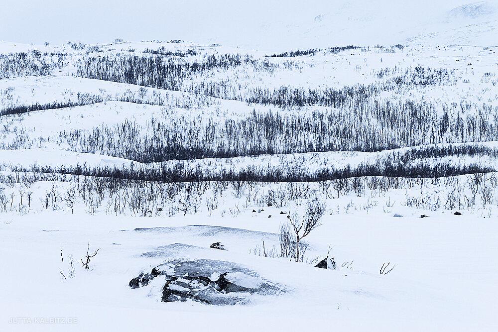 Blog-Winterreise-19.JPG