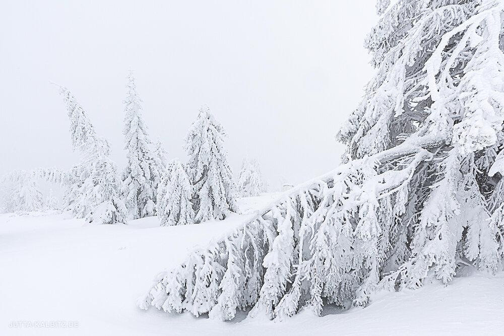 HP-Riesengebirge-9.JPG