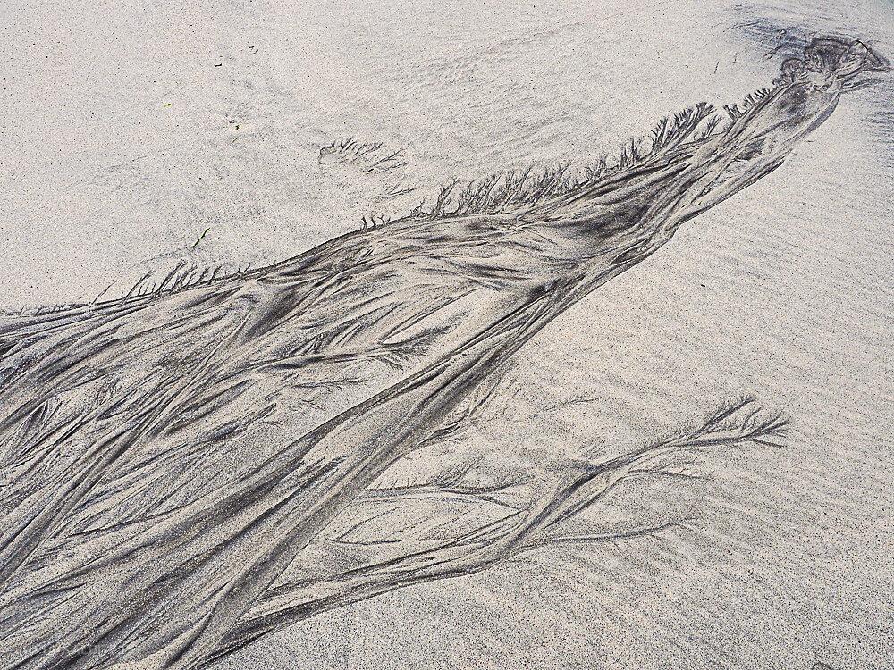 Sandstrukturen-28.JPG
